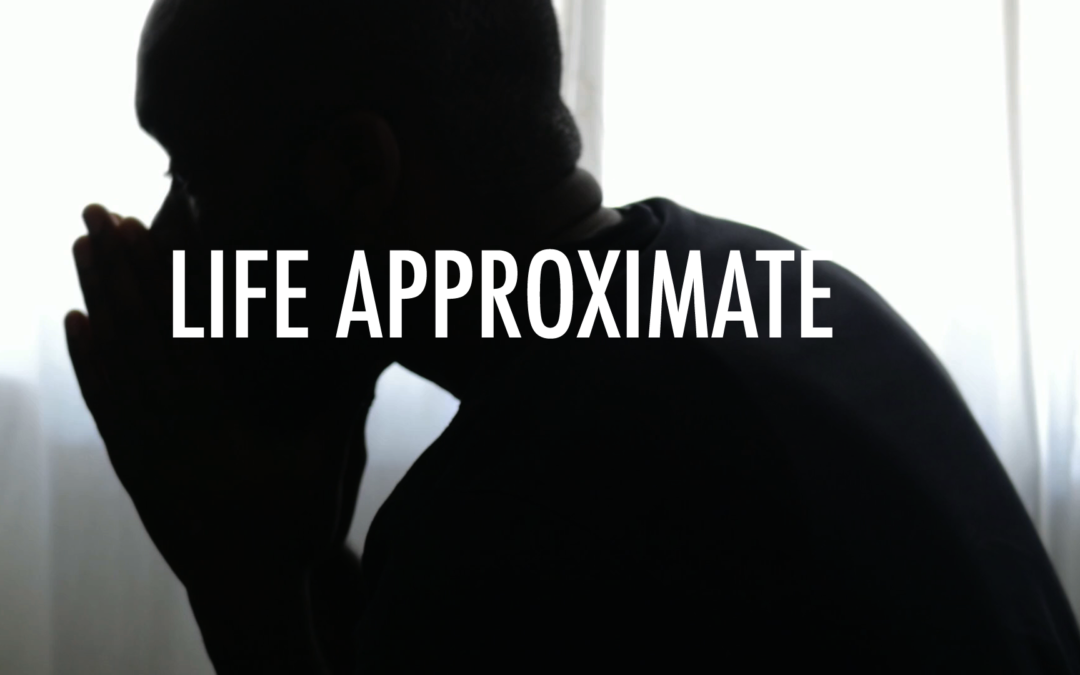 Life Approximate